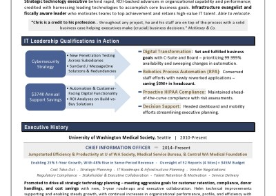 CIO Sample Resume