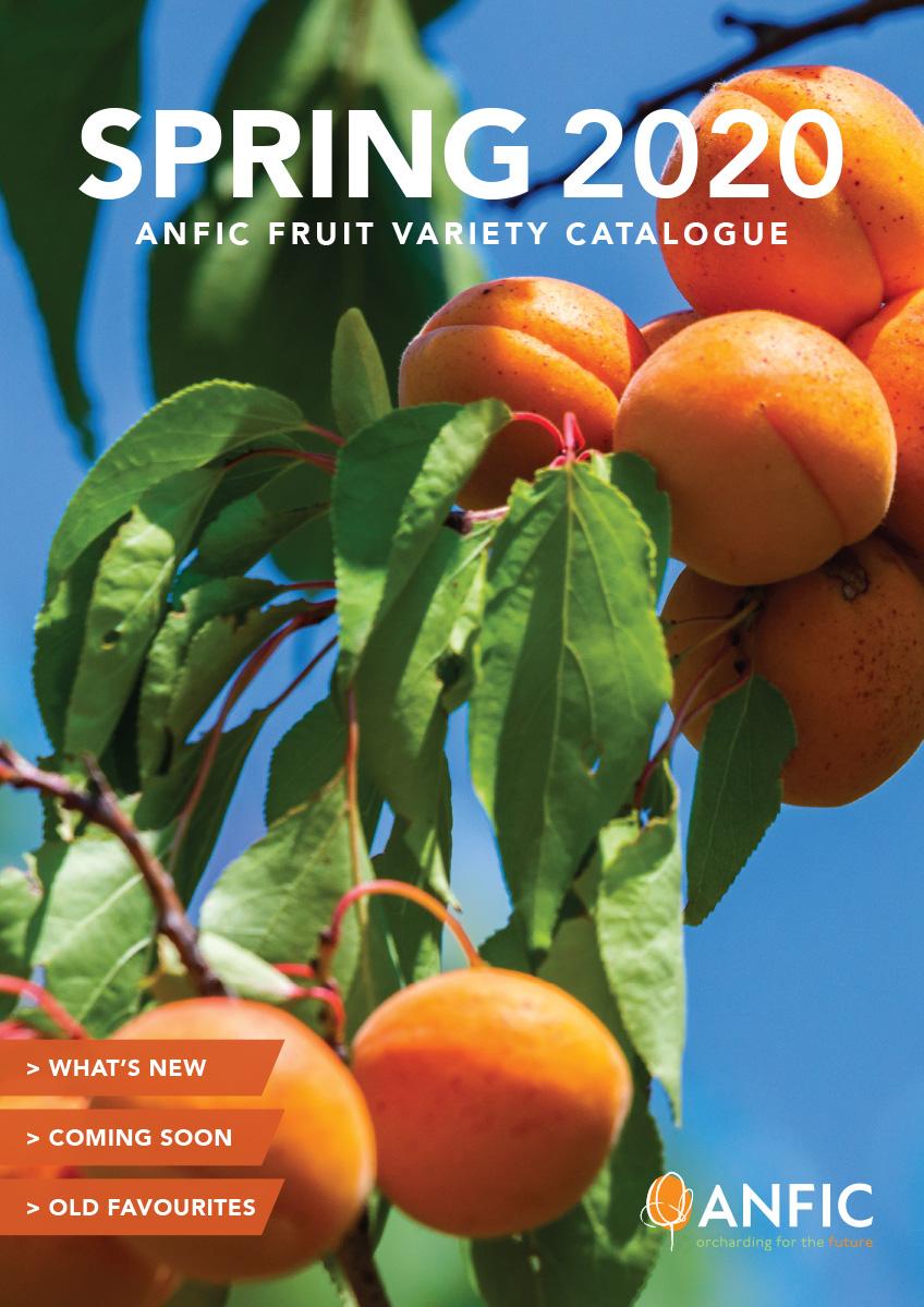ANFIC Catalogue 2020