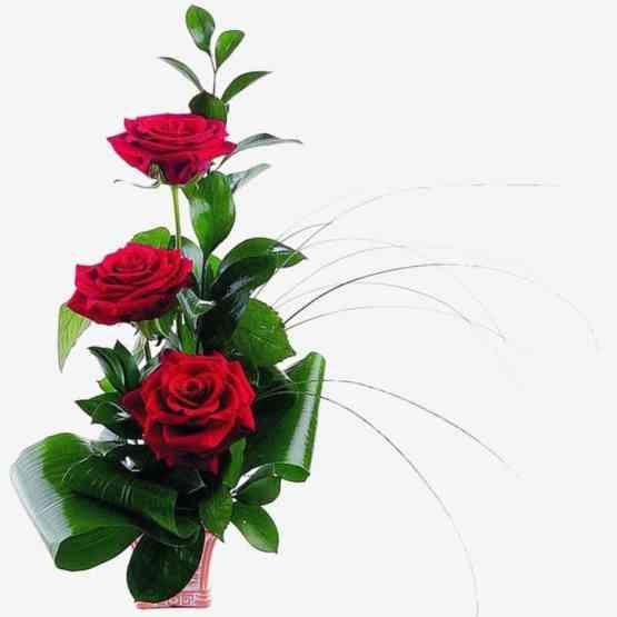Комплимент. Состав: красная роза, аспидистра, русскус, берграсс, кашпо малое, пиафлор