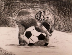 Charcoal Drawing of Baby Elephant