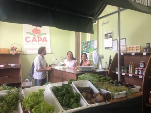 Sul Ecológica em Pelotas/RS @SKLindemann