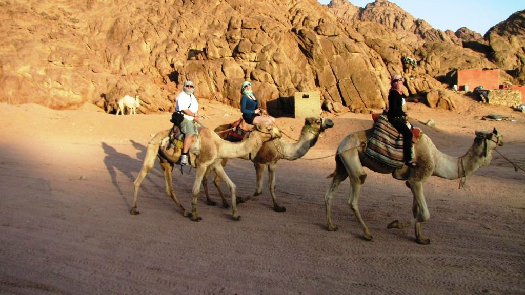 Cu ATV-ul prin deșert - plimbare pe camila