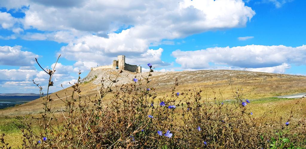 Cetatea Enisala