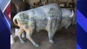 fox59-bison