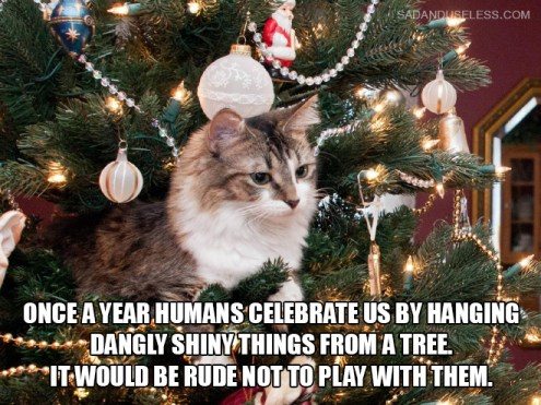 """Cat sitting in a Christmas tree thinking, """"once a year humans celebrate us by hanging dangly shiny things from a tree. it would be rude not to play with them"""""""