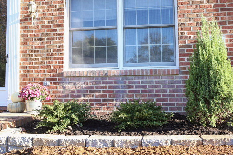 Simple Front Yard Landscaping Makeover
