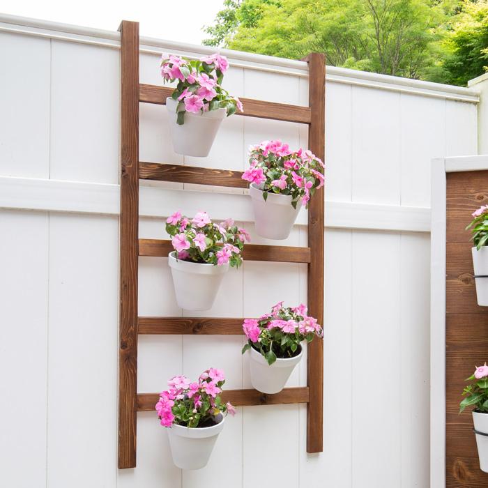 DIY Wall Planter Ladder