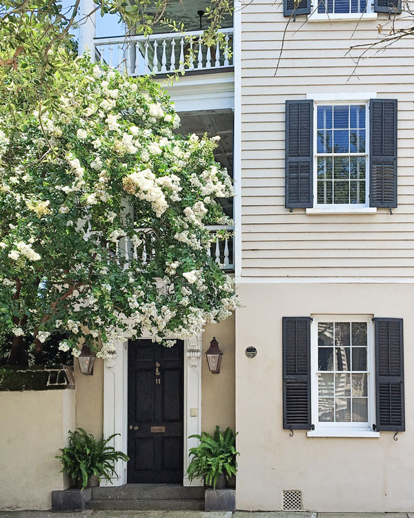 Historic Charleston house with crepe myrtle