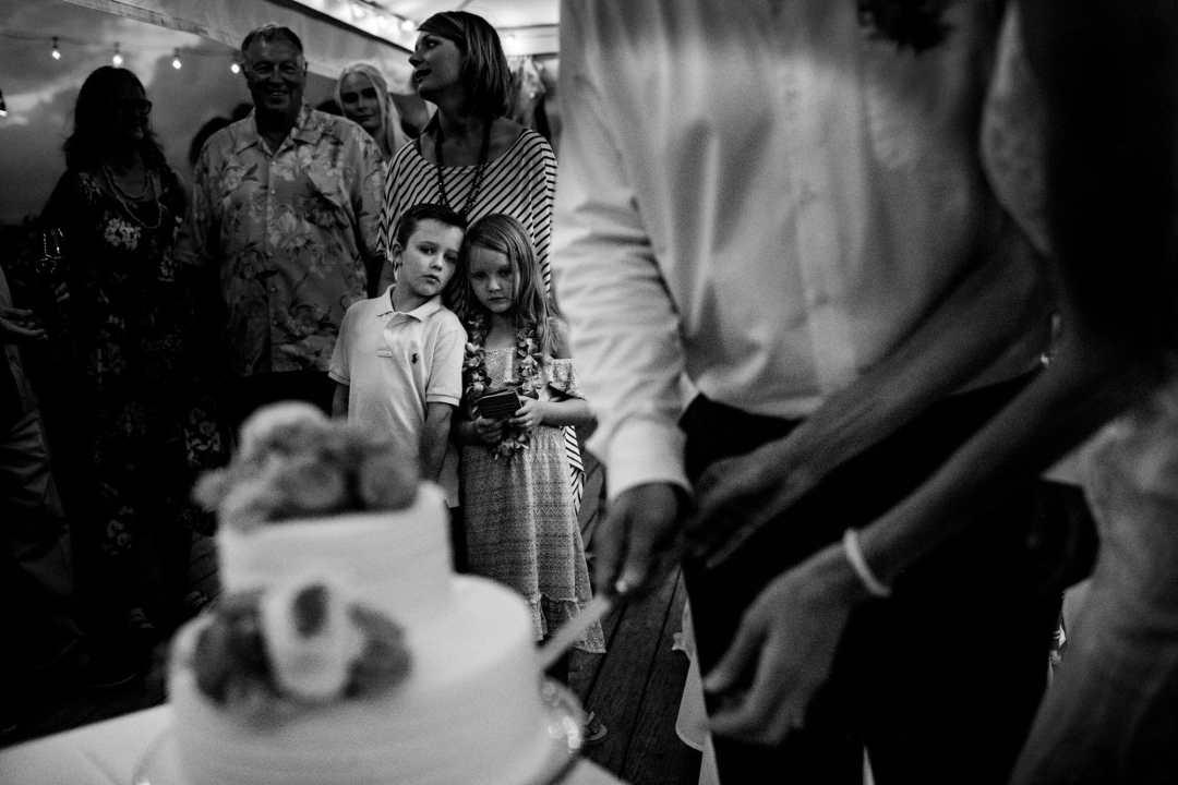 reception cake cutting image