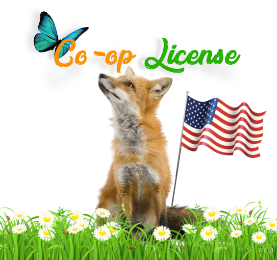 Co-op Licenses – now available at Jelly Bean Jar Books