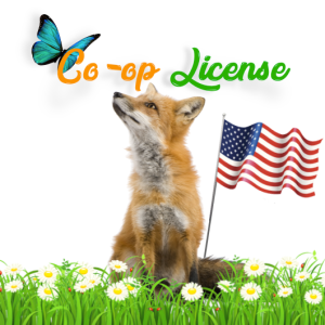 Co-op License