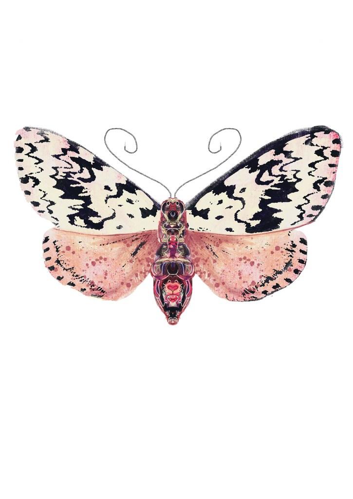 Roze mot, zwarte stippen A3 print Angela Peters, NatuurlijkAngelart