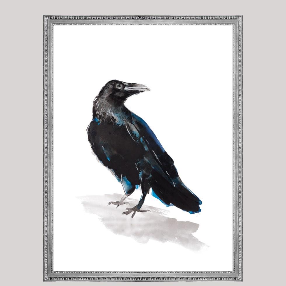 Black bird Deer, Natuurlijk Angelart, Angela Peters. Illustraties inkt Aquarel