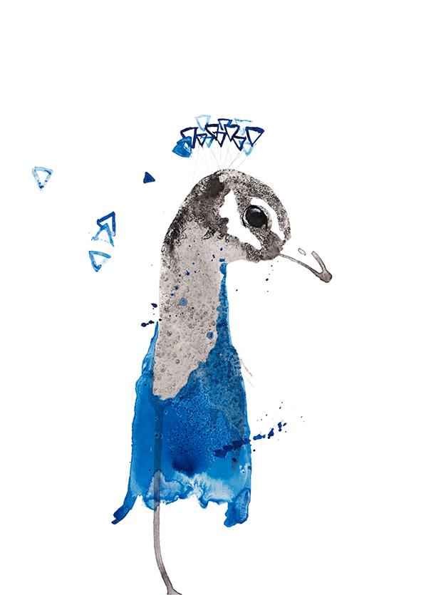 Peacock pauw vogel animal dieren print, Natuurlijk Angelart,