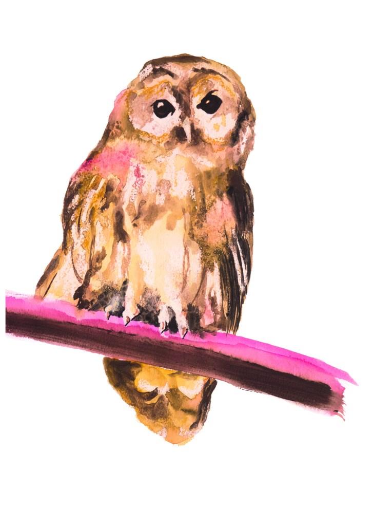 Owl, uil, bird, vogel, animal dieren print, Natuurlijk Angelart, Angela Peters. Illustratie Ink aquarel