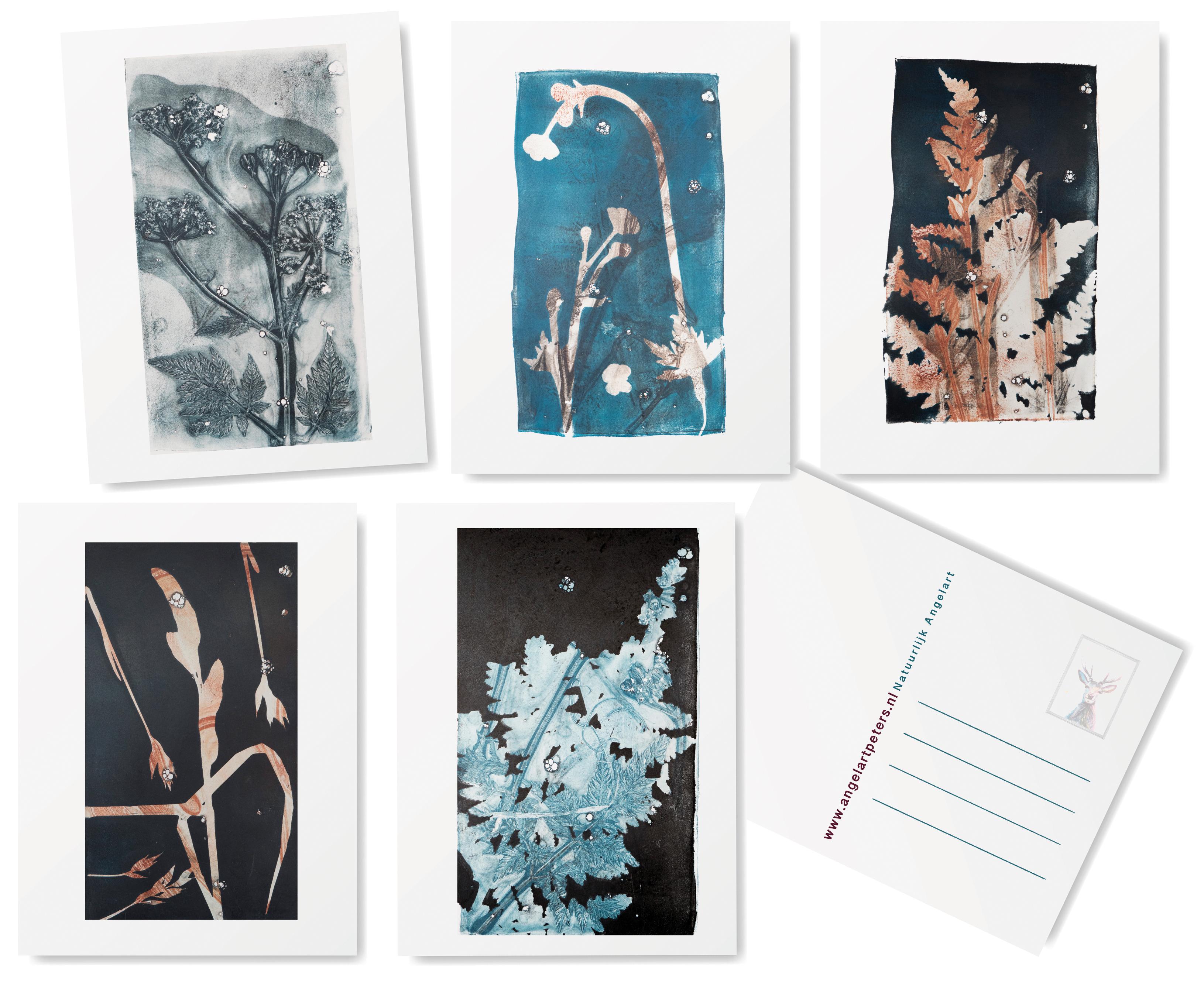 Angela Peters botanische wenskaarten