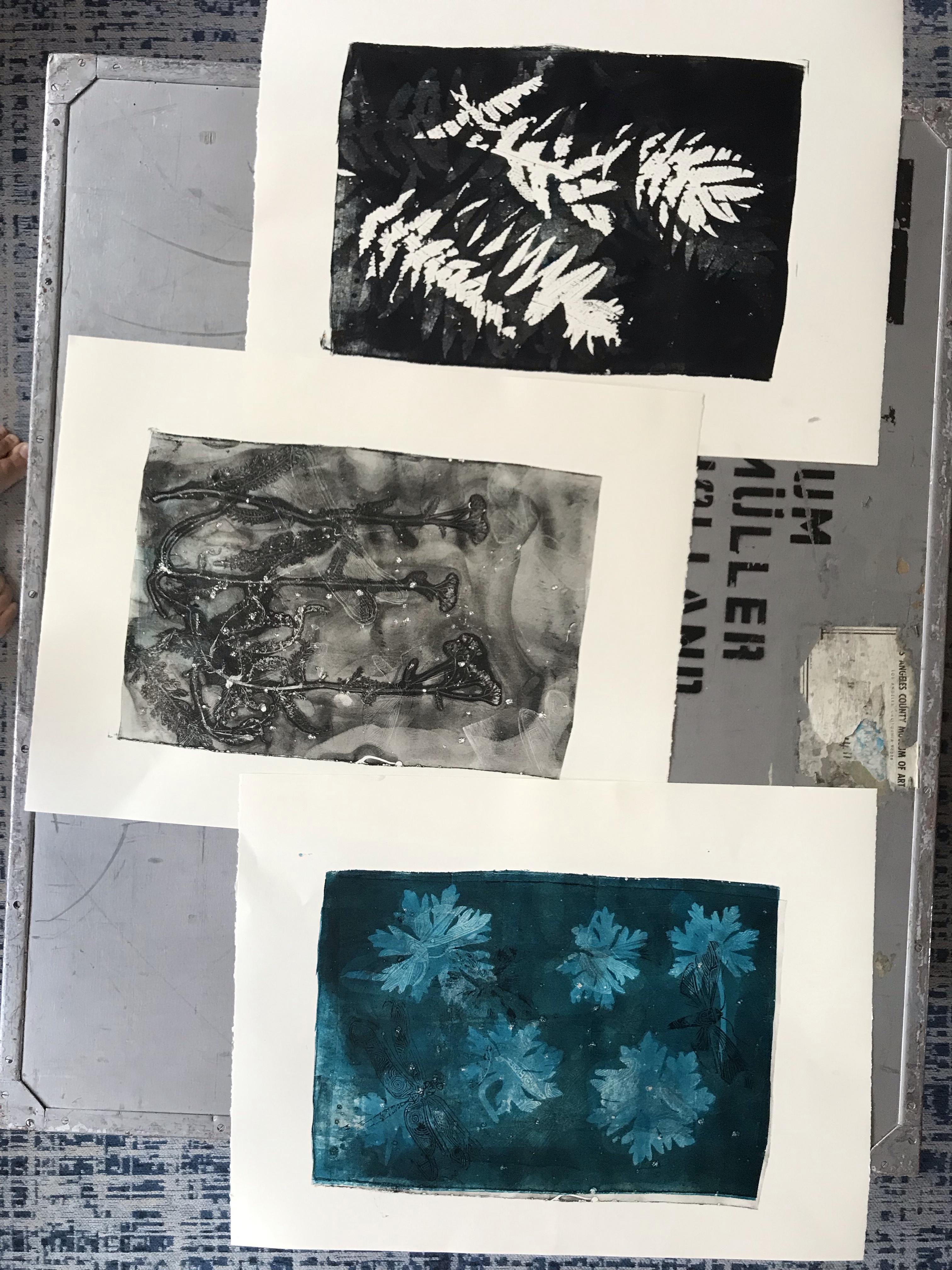Gelatine druk, natuur-tint van Angela Peters bij Angelart Kunst&Zo
