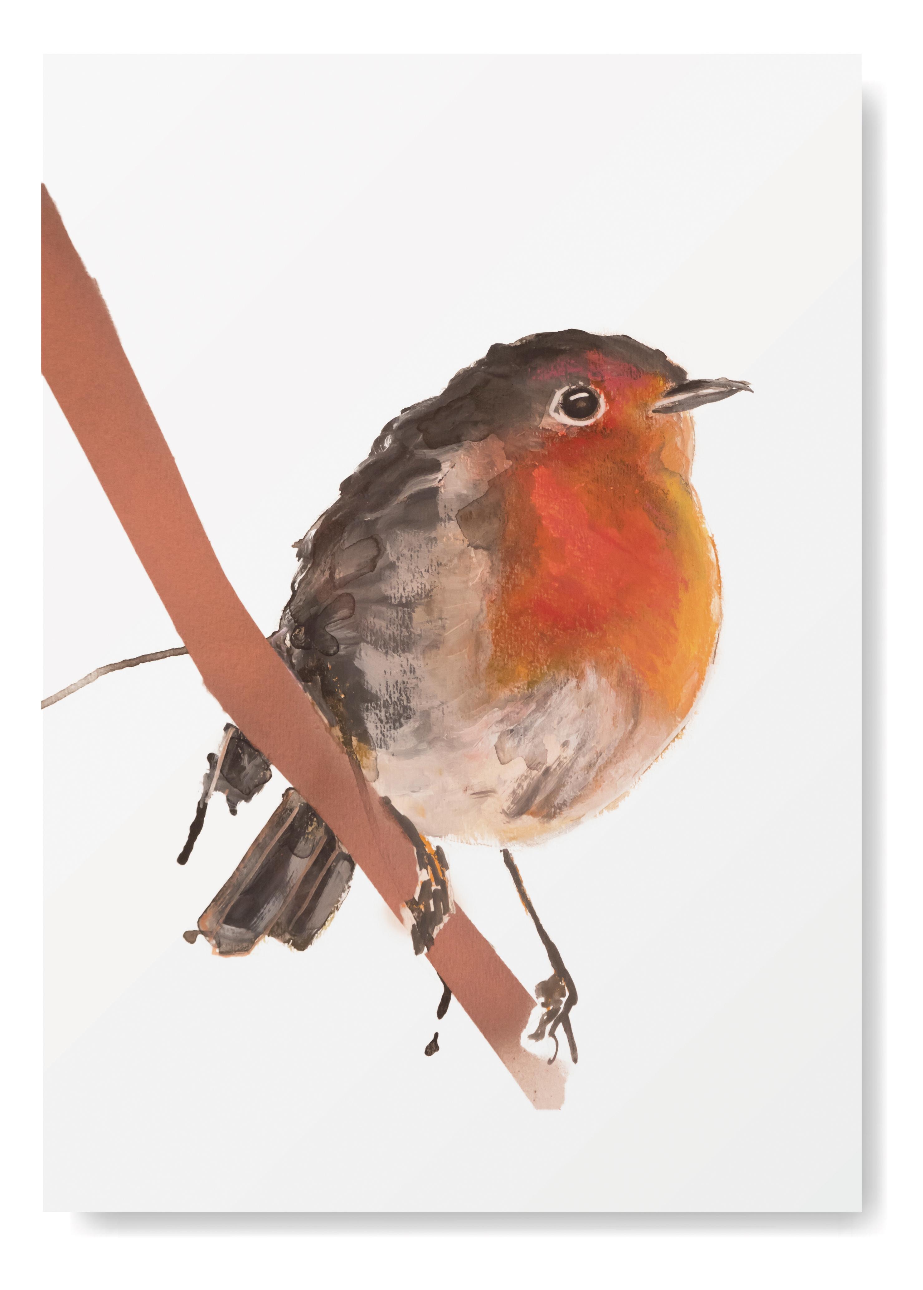 Angela Peters illustratie, vogel kaarten Angelart Kunst&zo vogel poster roodborstje