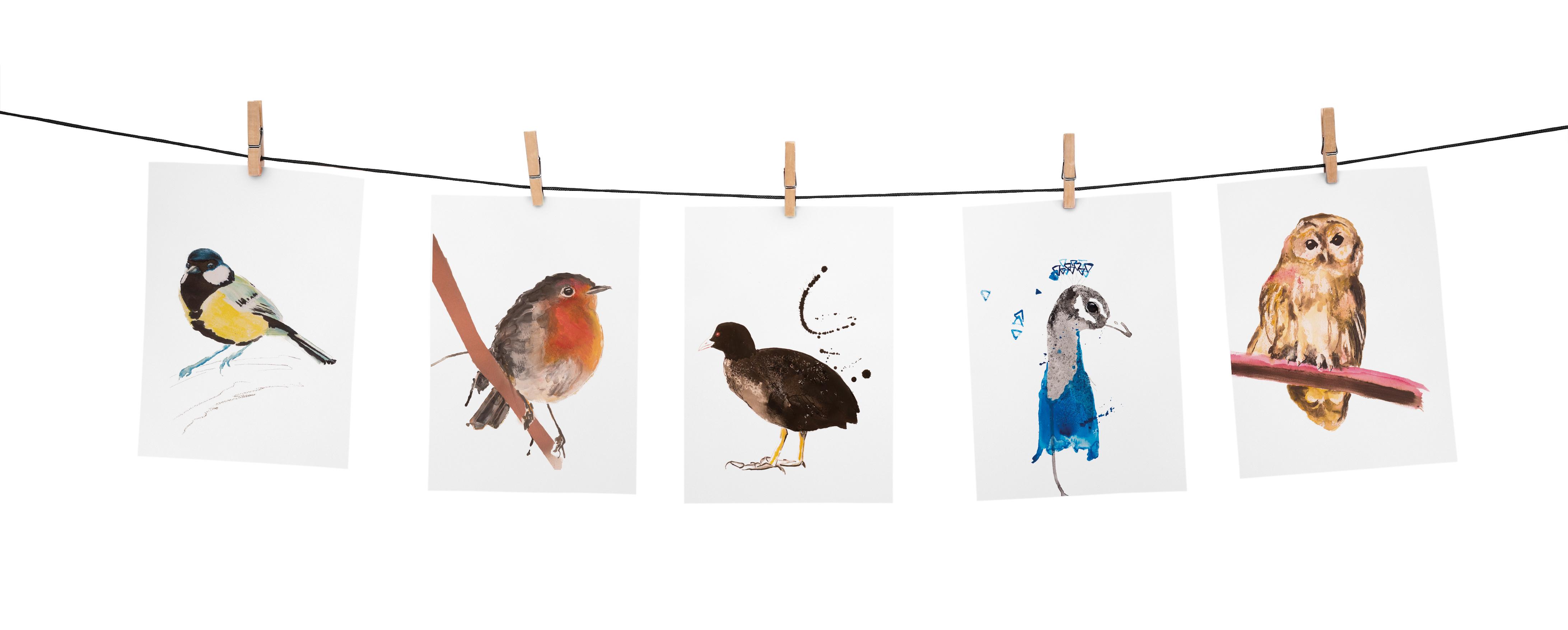Angela Peters illustratie, dieren kaarten Angelart Kunst&zo kunst vogels