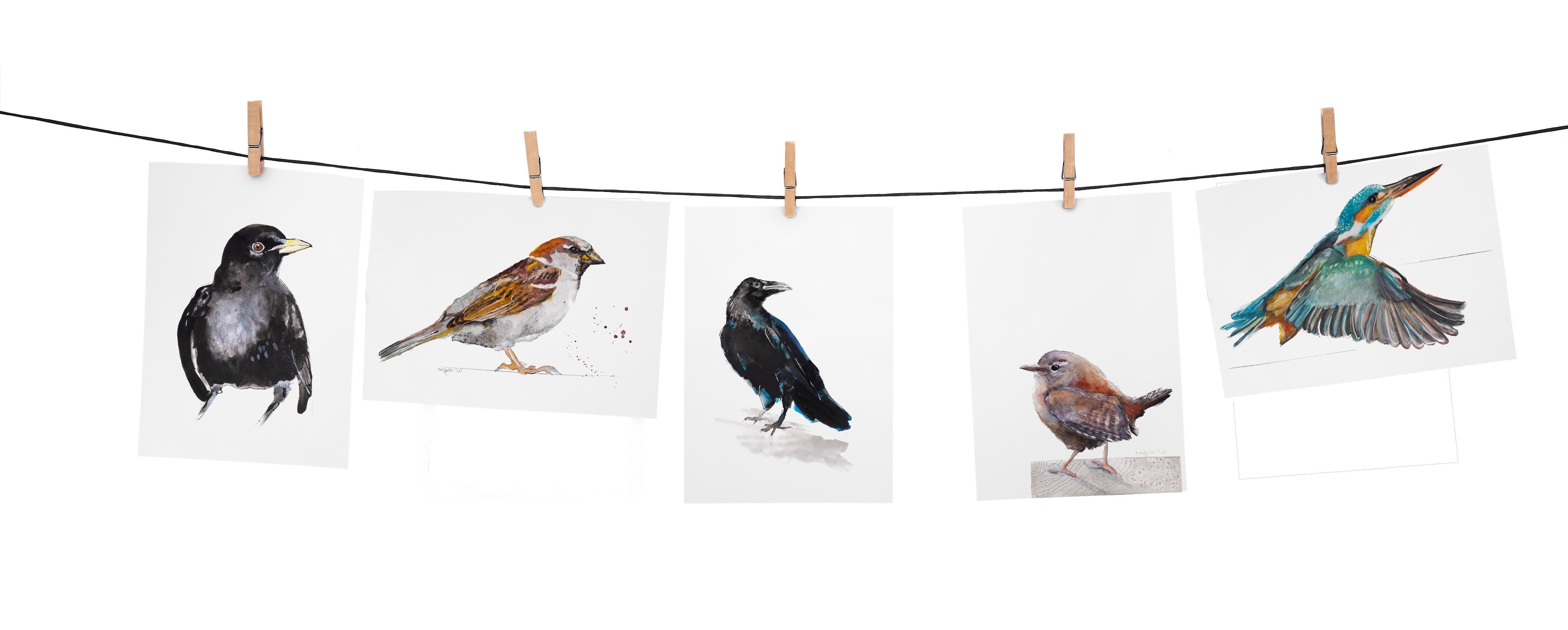 Vogel wenskaarten set 15 natuurlijk Angelart, angela Peters galerie Hattem