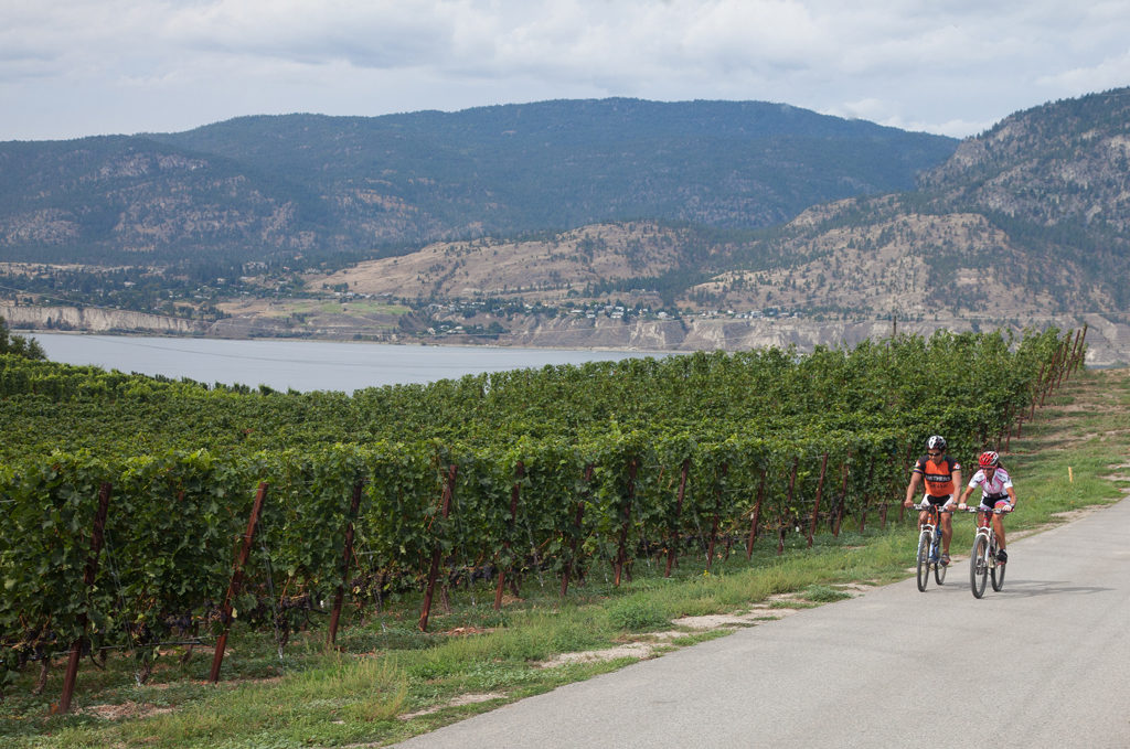 Penticton Cycling