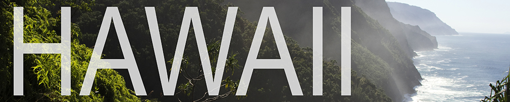 a banner that links to hawaii blog posts
