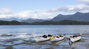 kayaks docked at Mud Bay on a Paddle West Tour in Tofino, B.C.