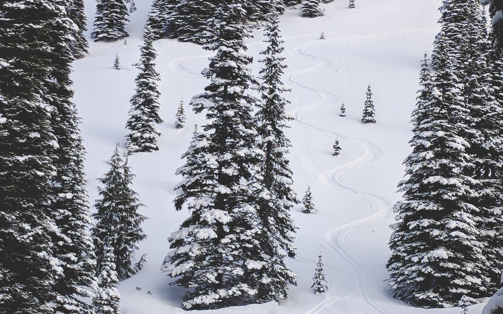 Crystal Mountain backcountry skiing turns
