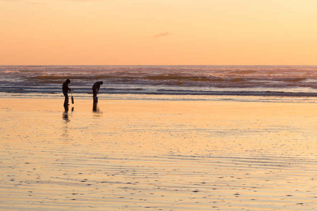 How to Razor Clam in Washington: What I Learned