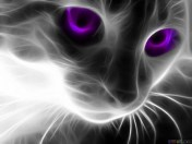 thumb3_abstract_cat_with_purple_eyes