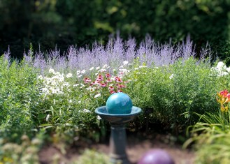 dsc04470-garden-2