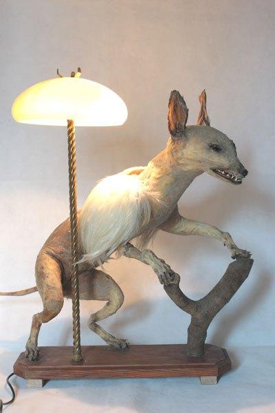 Renard, Chimère renard ailé, empaillé et dépoilé, avec plumes et verrerie.