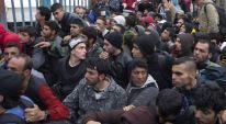 muslim migrants 3