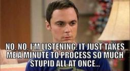 process-so-much-stupid