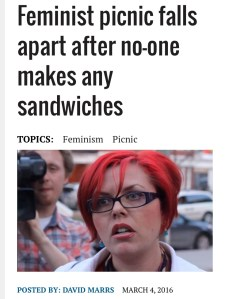 sjw-feminism-picnic