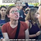 triggered-feminist-equality