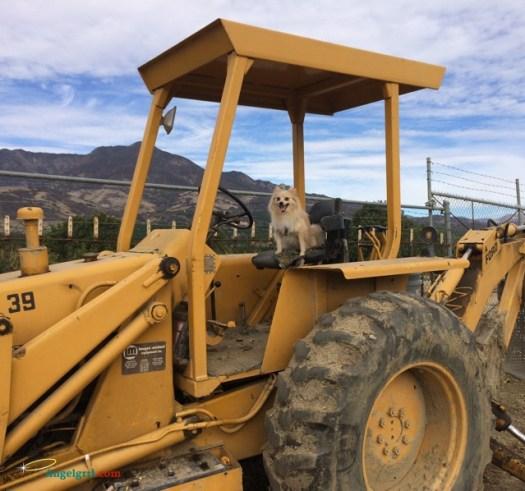 20140311-rowan-tractor