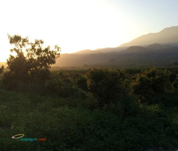 20140714-misty-mountains