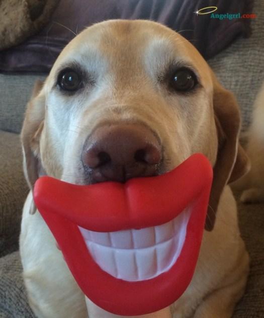 loki-smile