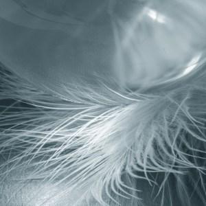 White feather glass ball