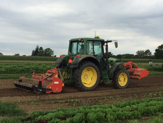 Rotovater in action on rear of 6430 Deere. Befco Destroyer mower at rest on front. Primo driving. Romaine lettuce in foreground.