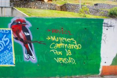A mural honoring the Women Walking for Truth and the National Movement for Victims of State Crimes (MOVICE by its Spanish acronym).