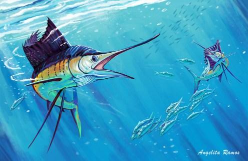 gia-sailfish_inter