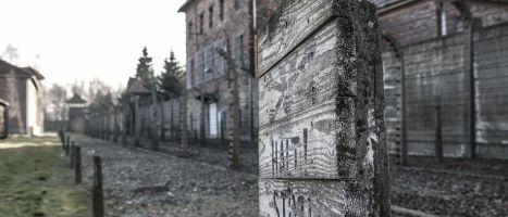 Oswiecim, Norimberga