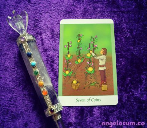 7 of Coins Simply Deep Tarot Daily Inspiration Draw
