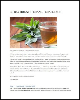 Holistic Change Challenge cover