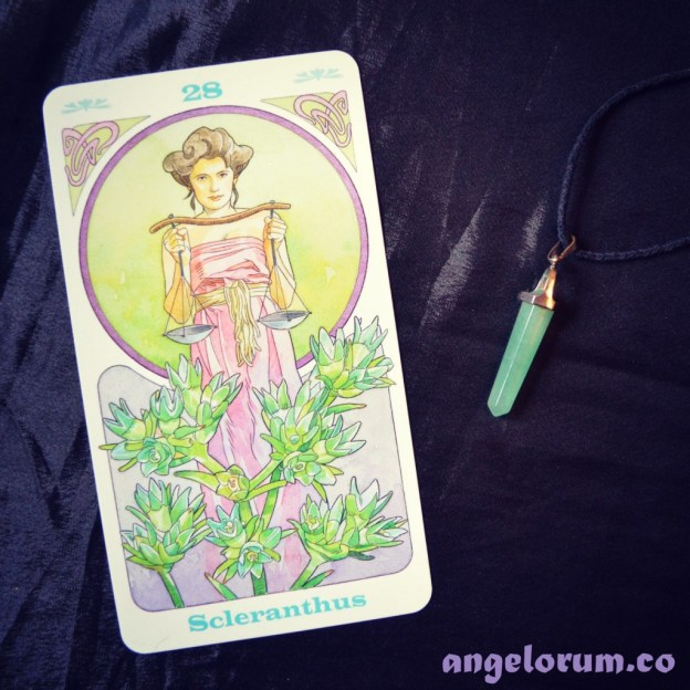 Scleranthus Bach Flower Oracle Cards