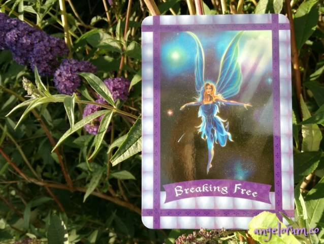Breaking Free from the Healing with the Fairies Oracle
