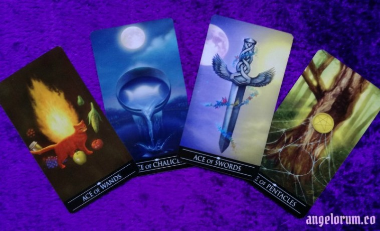 The Tarot Suits in Love Readings