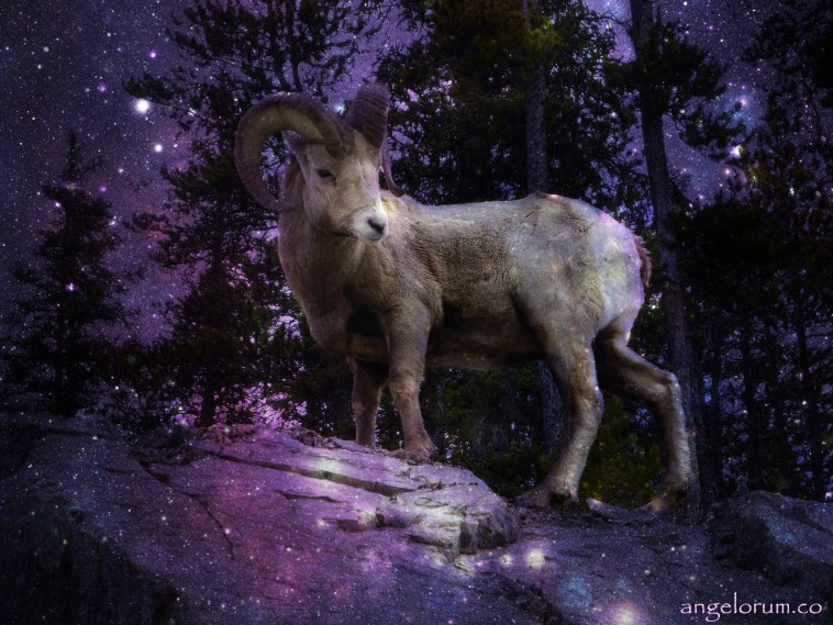 Full Moon in Capricorn Lunar Eclipse July 2019